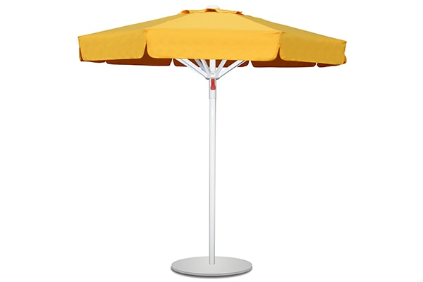 Cipsli Şemsiye