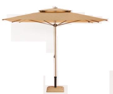 İpli Bacalı Şemsiye